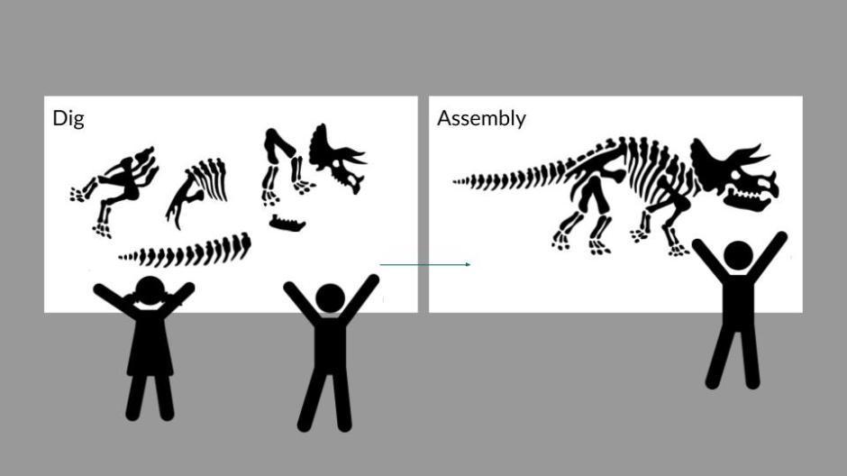 Dinosaur Puzzle (2)